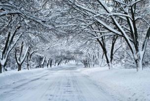 Поведение при тежки зимни условия
